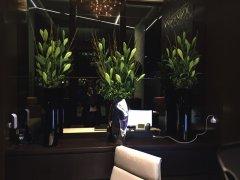 Office flowers in London