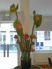 krystle-corporate-flowers-01.jpg