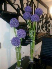 krystle-corporate-flowers-03.jpg